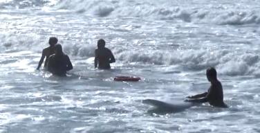 Paura nella spiaggia di Isola delle Femmine, ma era un falso allarme