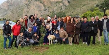 Festa della mimosa a Capaci: l'associazione Sommariva pianta una mimosa alle Zercate