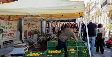 Isola, mercato del contadino: le aziende agricole offrono alla cittadinanza i prodotti biologici