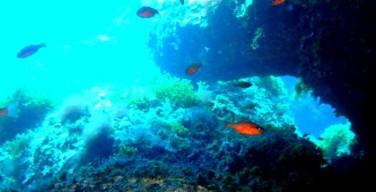 Eudi Show 2017: Isola delle Femmine partecipa per promuovere l'area marina protetta