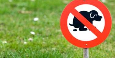Isola delle Femmine, multa fino a 500 euro a chi non raccoglie gli escrementi del proprio cane