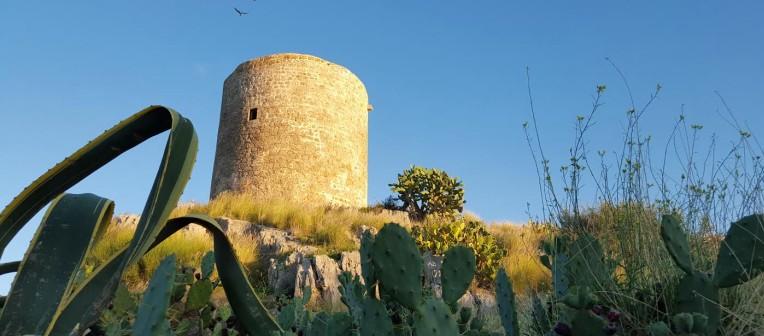 Visita guidata alle torri della costa di Palermo: prima tappa alla Torre in terra di Isola delle Femmine