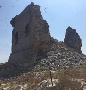 torre isola2